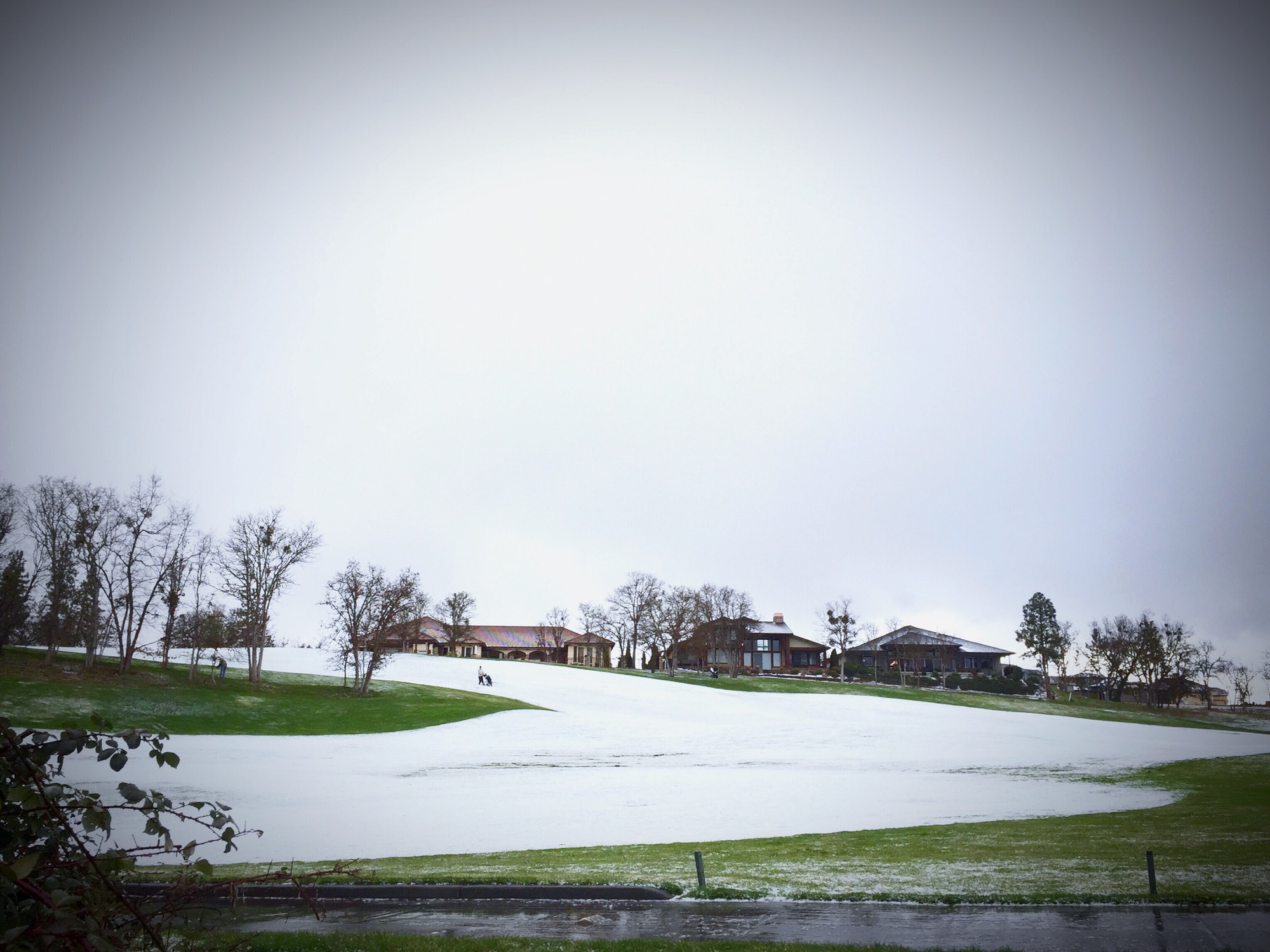 Golfing in the snow